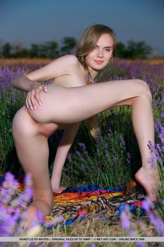 Metart Honey Liz 15
